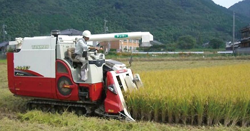 山口県における集落営農法人について