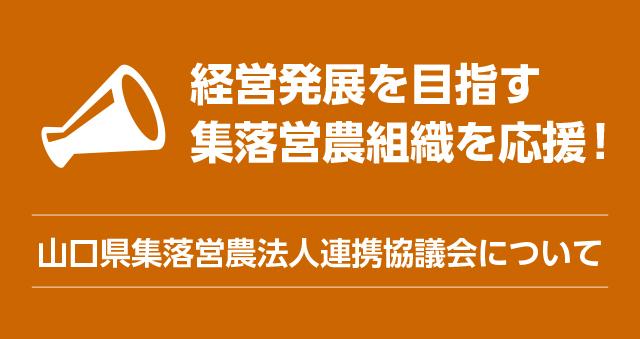 山口県集落営農法人連携協議会について