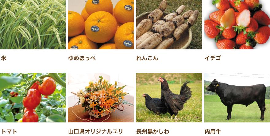 山口県の農産品