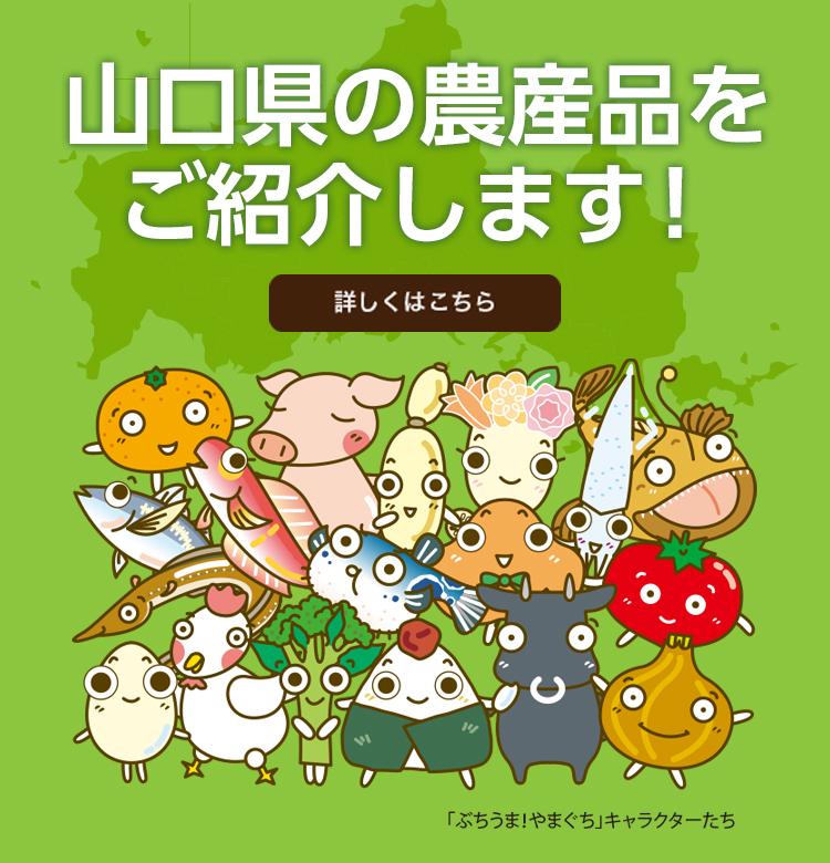 山口県の農産品紹介します。